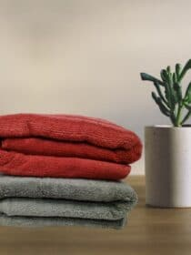 Cotton Towel (pack of 2)